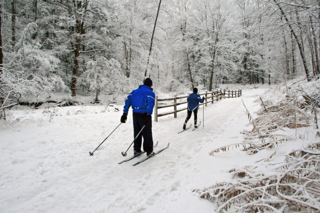 Cross-country skiing in Dickinson County, Michigan